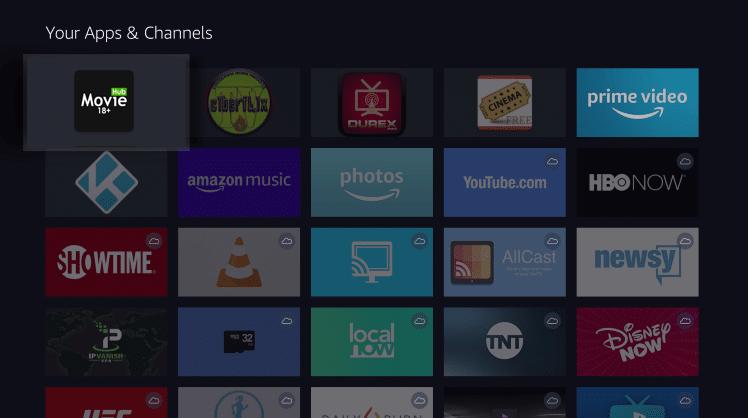 Install Movie Hub App on Firestick